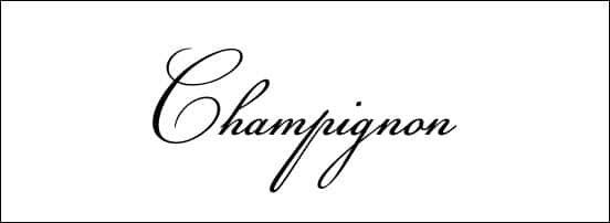 Champignon Calligraphy Font