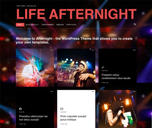 Afternight Nightlife Website Templates