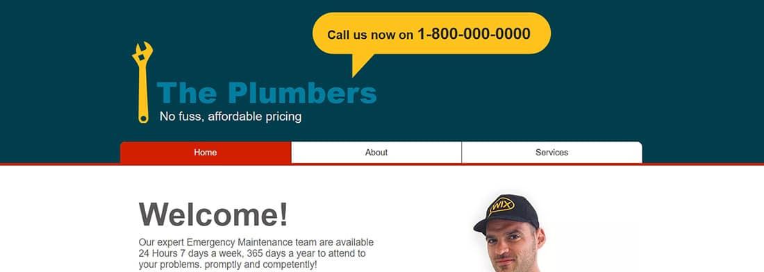Plumber Website Template _ WIX