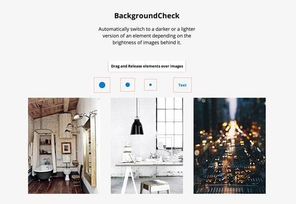 BackgroundCheck JS