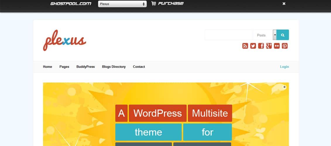 Plexus Network WordPress & BuddyPress Theme