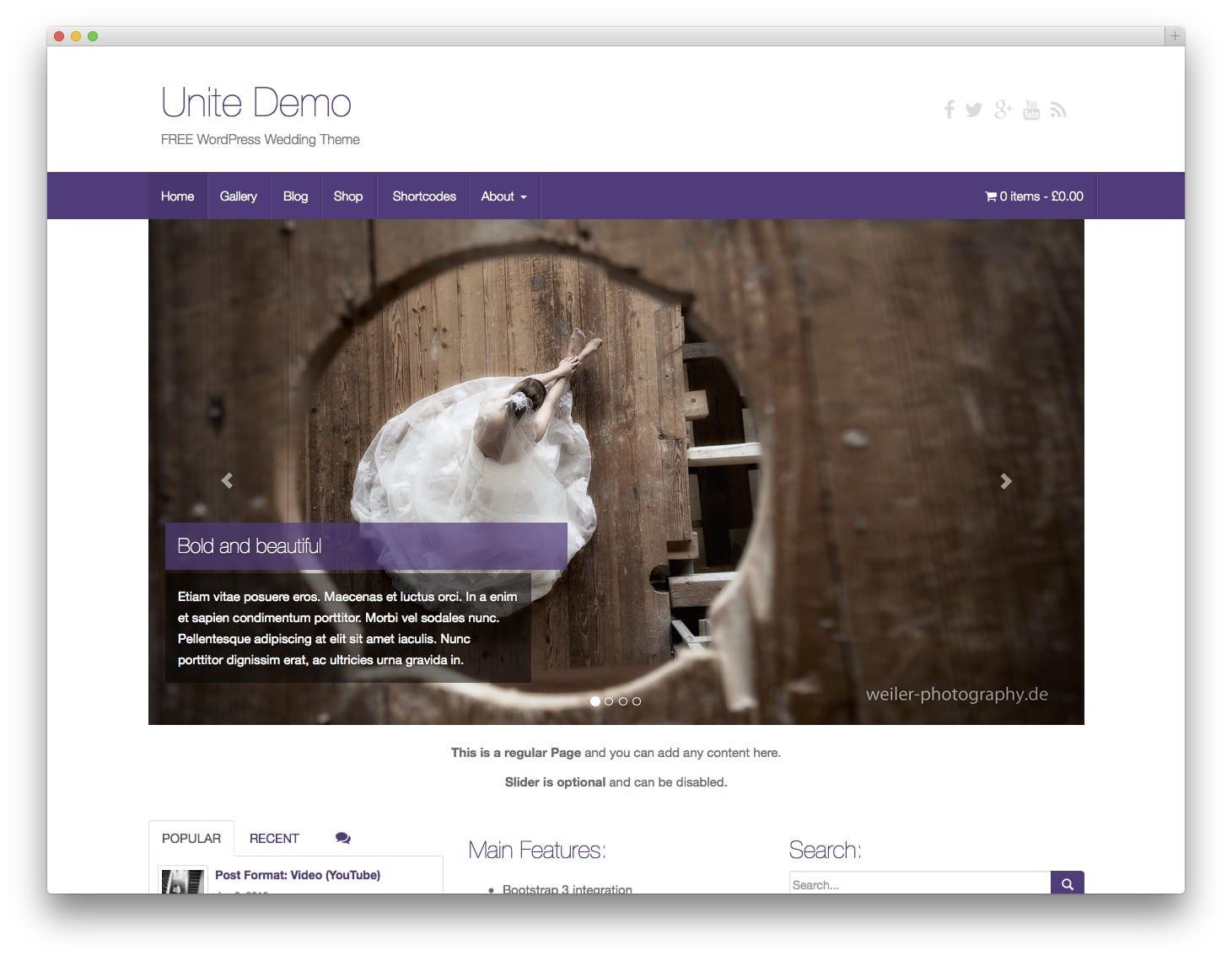 Unite Free Bootstrap WordPress Themes