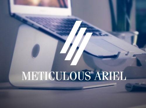 Meticulous Ariel Free Font