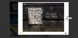 20 Best Free Gallery Plugins for WordPress