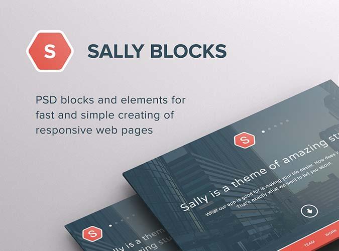 Sally Blocks