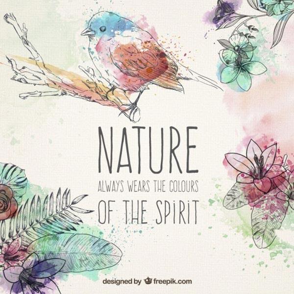 Hand-drawn-natural-elements