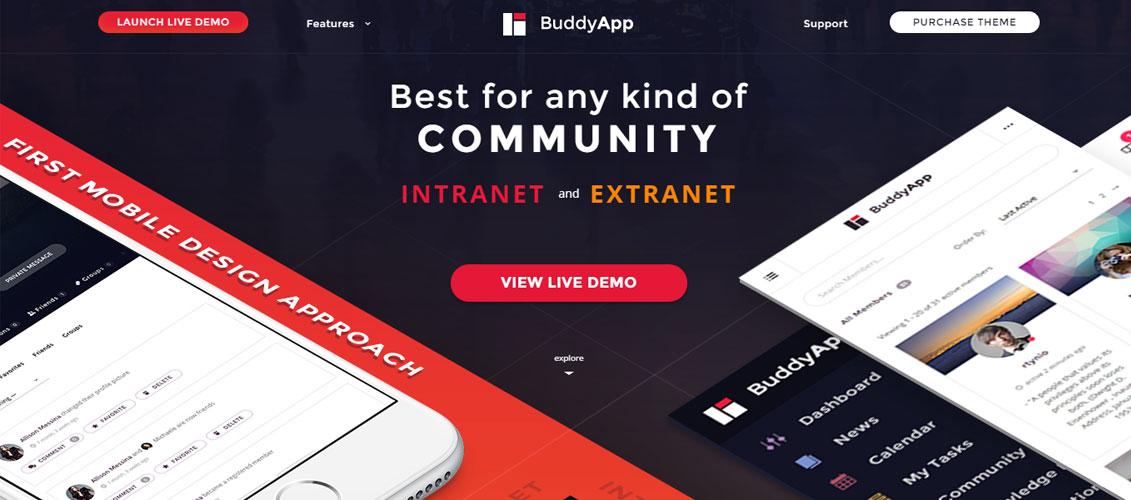 BuddyApp Mobile First Community WordPress theme