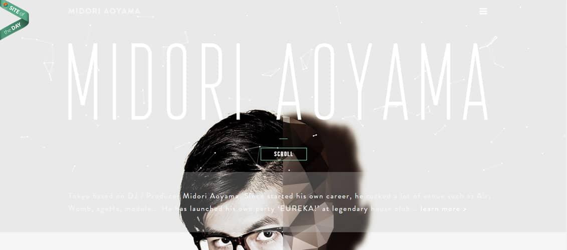 MIDORI AOYAMA svg website