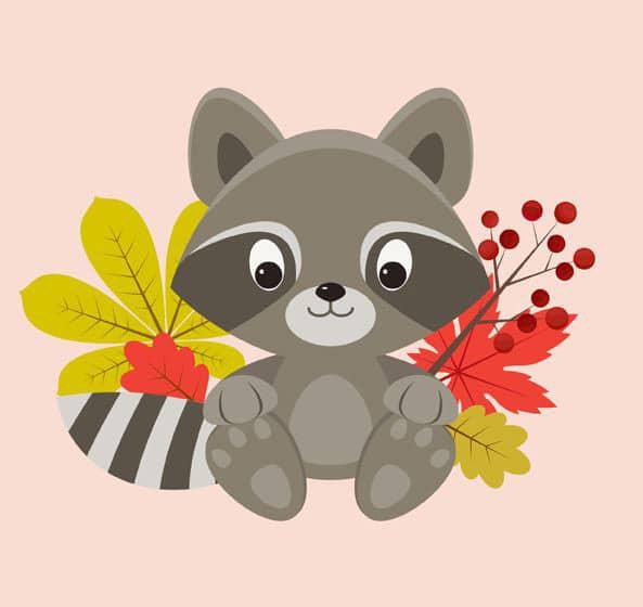 create-a-raccoon-character