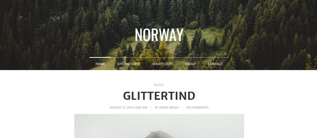 Norway - Responsive WordPress Theme Preview