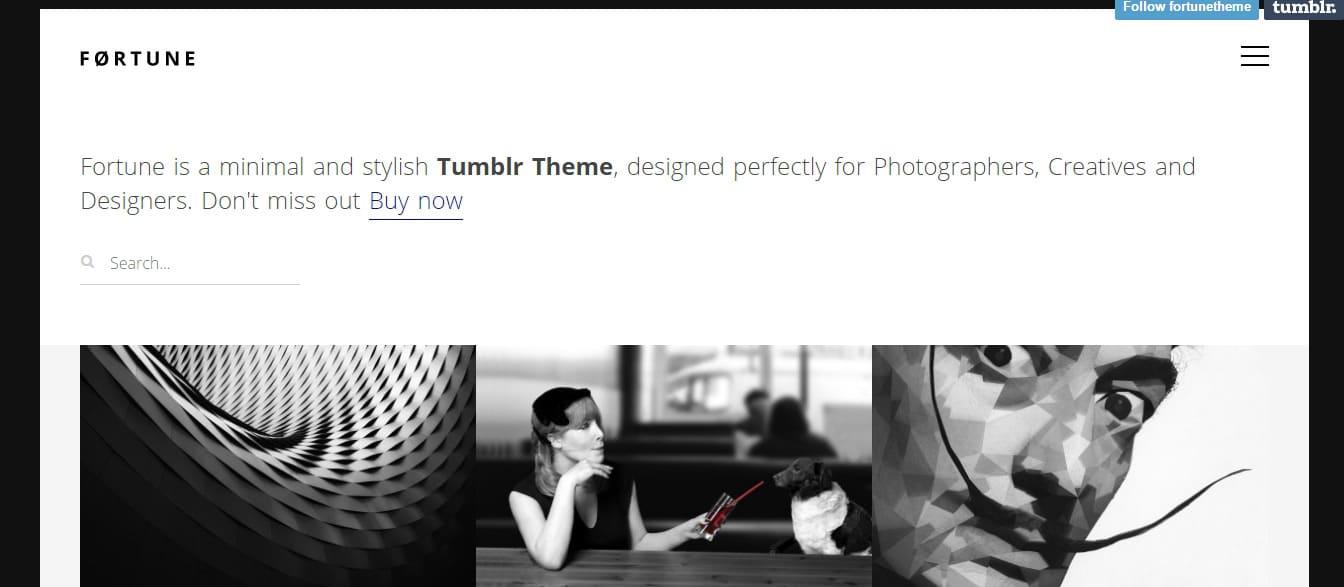 Fortune---Portfolio-Tumblr-Theme-Preview---ThemeForest