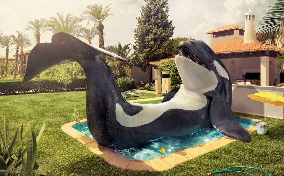 Animals 3D Illustrations