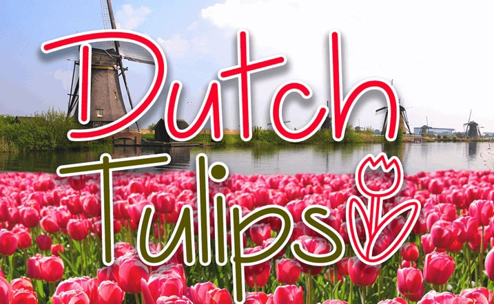 Dutch Tulips Demo Font