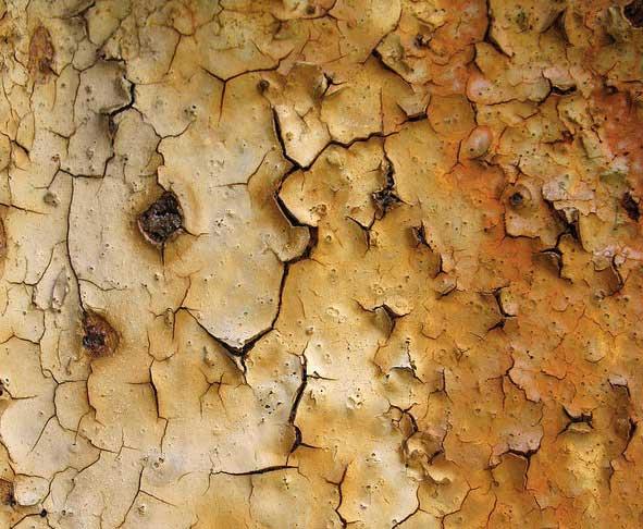 17 Rust texture 5