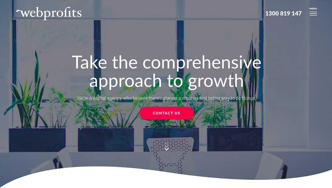 19 Webprofits Landing Page
