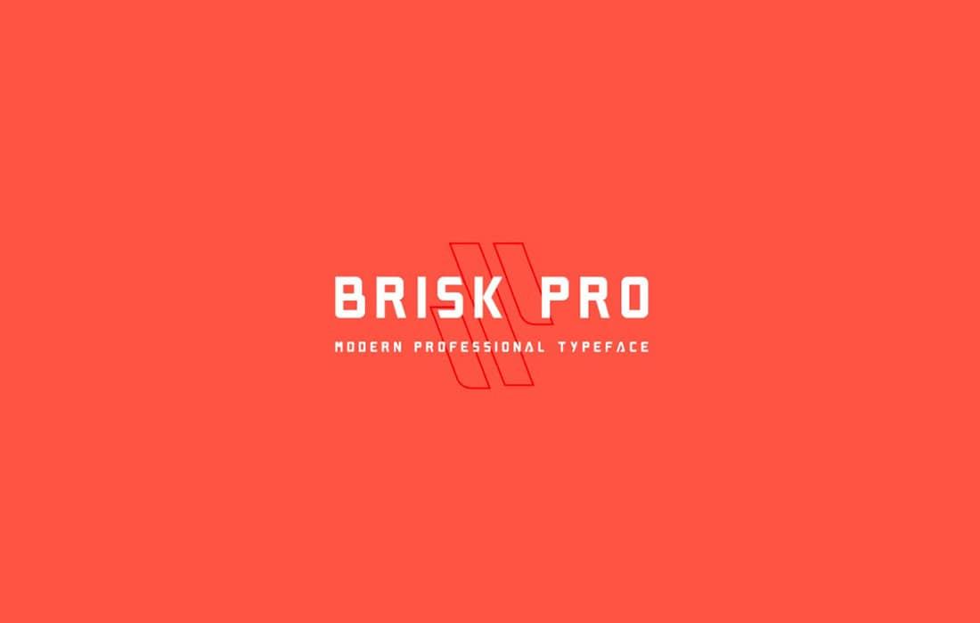 5 Brisk Pro Contemporary Font