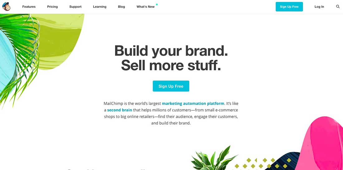 9 MailChimp Landing Page