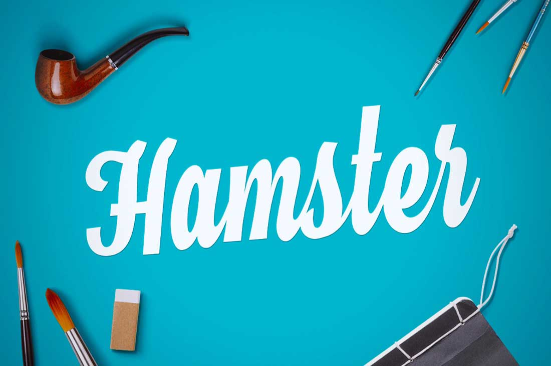 16 Hamster Script