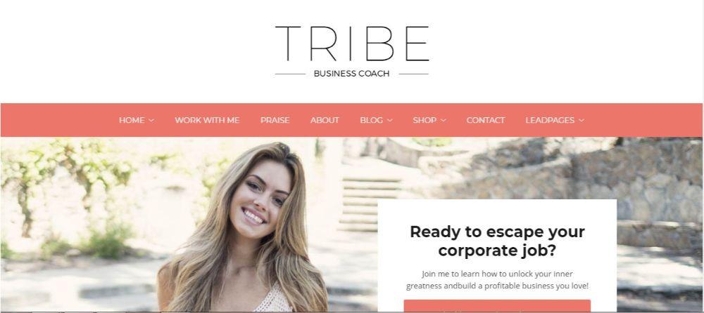 12 Stunning Life Coaches WordPress Themes- Tribe