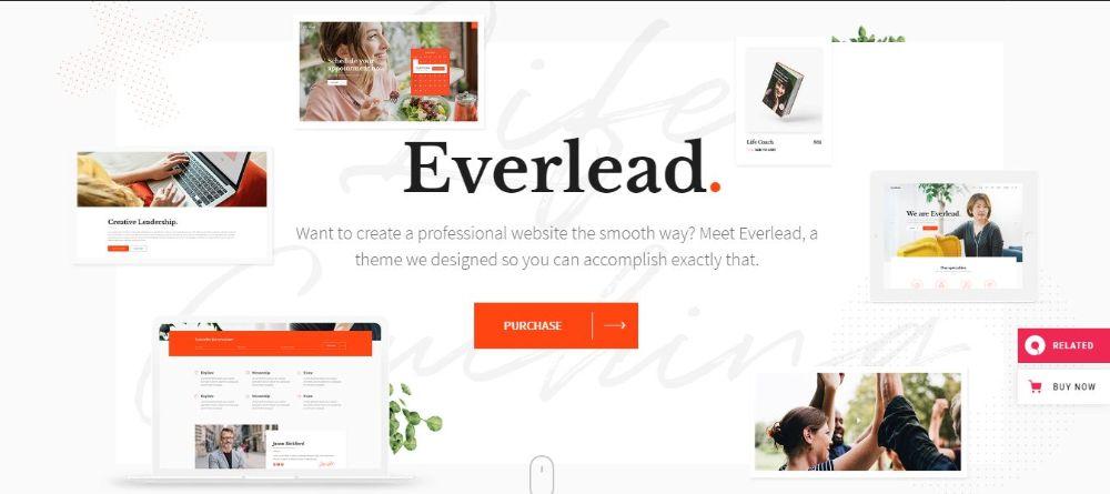 12 Stunning Life Coaches WordPress Themes- Everlead