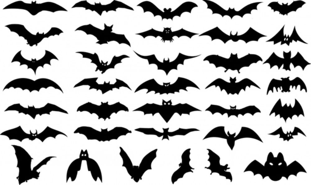 Halloween design elements bats icons silhouette design Free vector