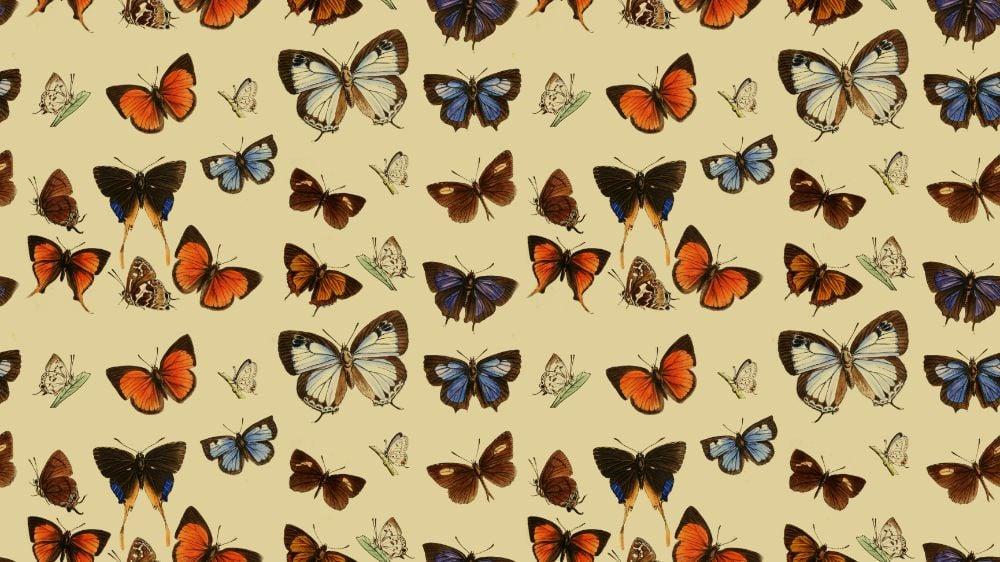 seamless vintage butterfly pattern