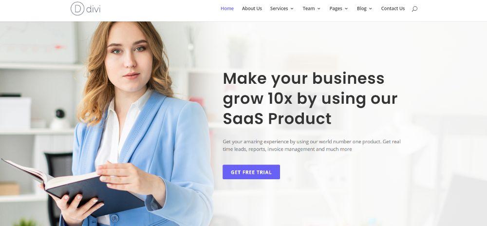 WordPress Themes for SAAS companies: SaaS