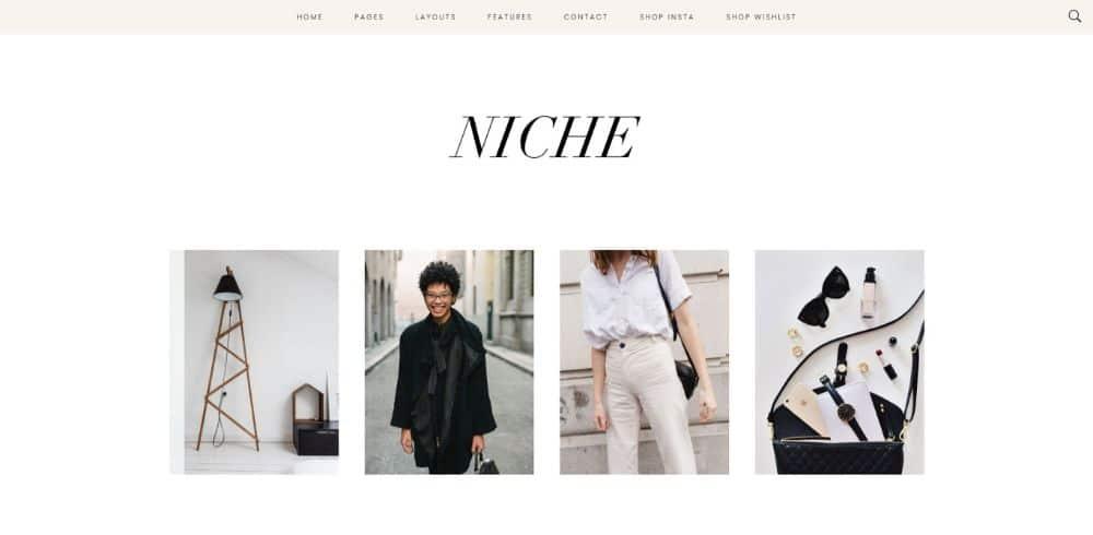 WordPress Themes for Affiliate Marketing: Niche