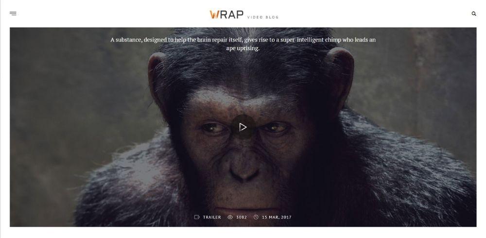 WordPress Themes for Affiliate Marketing: Wrap