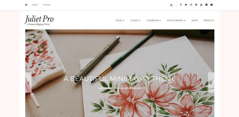 WordPress Themes for Affiliate Marketing: Juliet