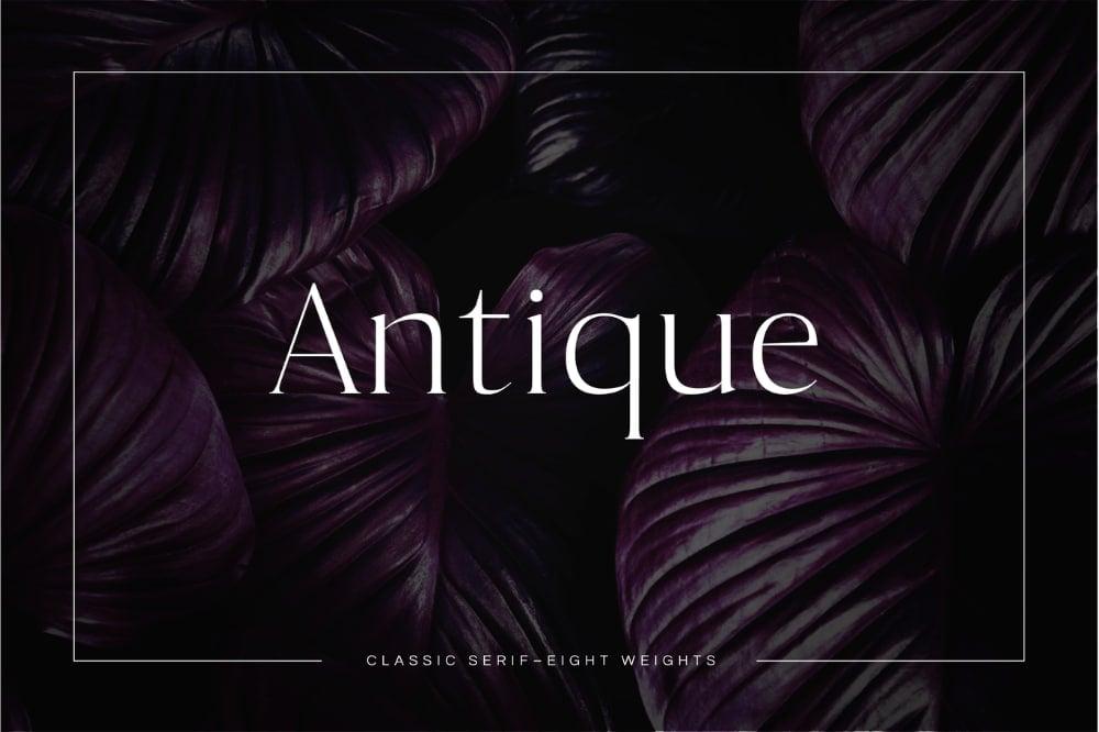 Best Fonts for Brochures & Flyers: Antique Luxury